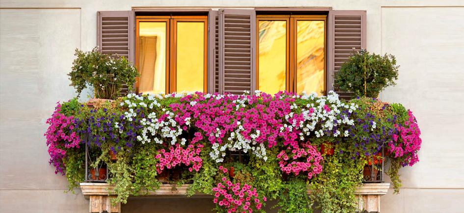 Résultats du concours façades-balcons fleuris 2019